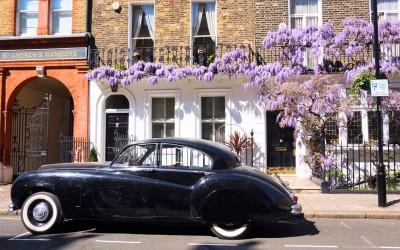 Glycine Marylebone