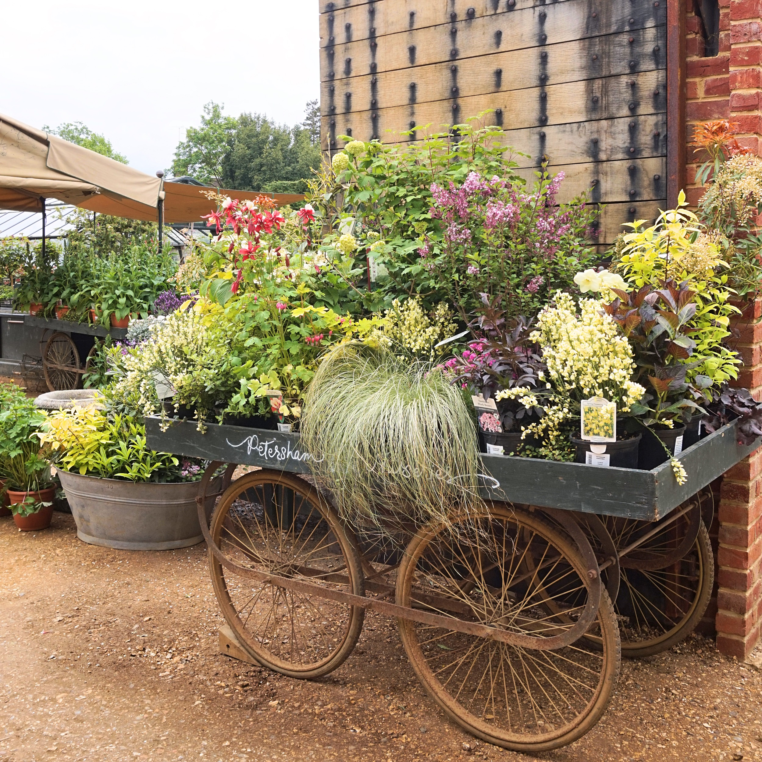 Petersham Nurseries_18