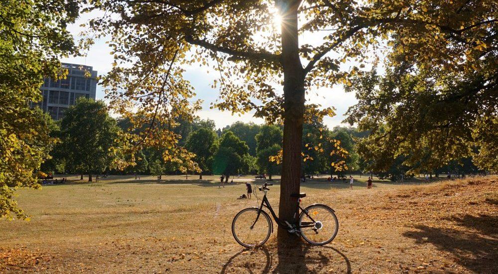 vélo-hyde-park