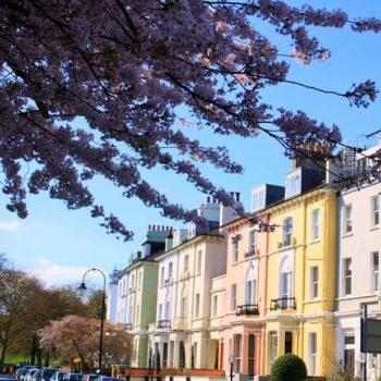 Primrose-Hill-printemps
